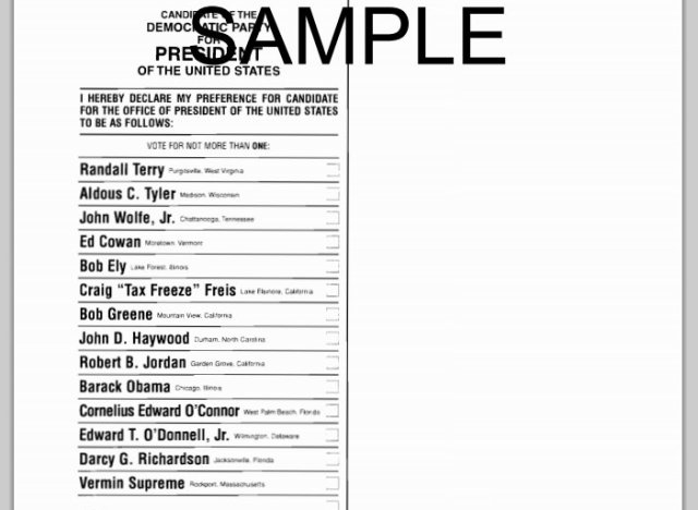 Thinking about writing in a candidate on election day? Read this.
